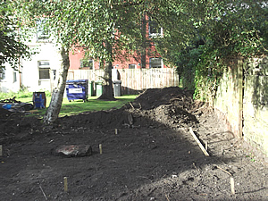 Picture showing the back being cleared 020917